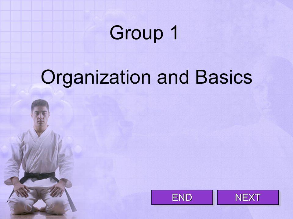 Group 1 Organization and Basics NEXTNEXT END