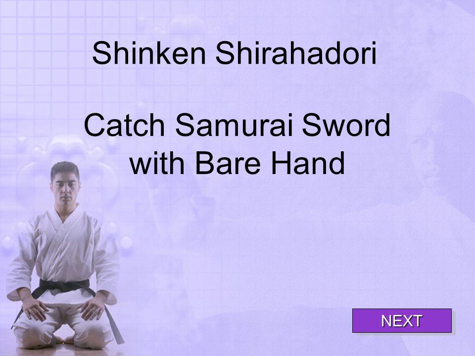 Shinken Shirahadori Catch Samurai Sword with Bare Hand NEXT