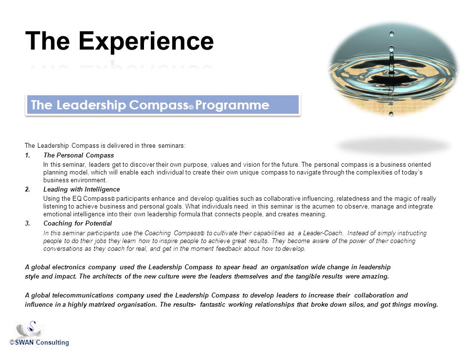 ©SWAN Consulting The Leadership Compass © Programme The Leadership Compass is delivered in three seminars: 1.The Personal Compass In this seminar, leaders get to discover their own purpose, values and vision for the future.