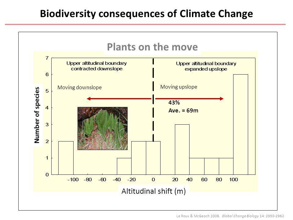 Plants on the move Moving upslope Moving downslope Number of species Altitudinal shift (m) 43% Ave.