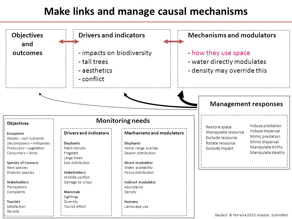Make links and manage causal mechanisms Objectives and outcomes Drivers and indicators - impacts on biodiversity - tall trees - aesthetics - conflict