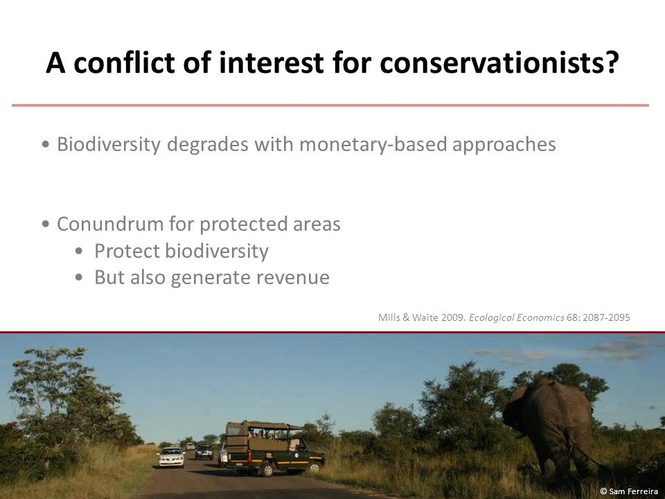 A conflict of interest for conservationists.