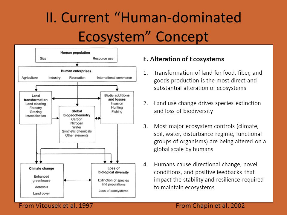 From Vitousek et al. 1997 1.Transformation of land for food, fiber, and goods production is the most direct and substantial alteration of ecosystems 2