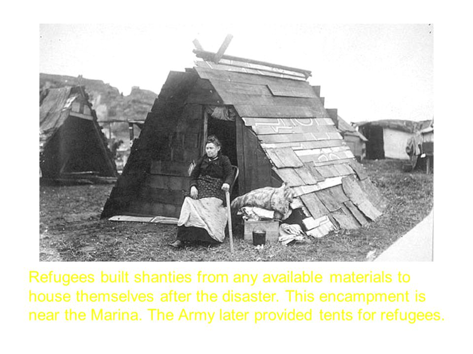 Refugees built shanties from any available materials to house themselves after the disaster.