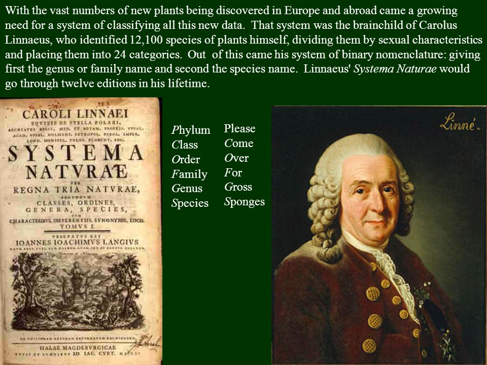 Science after Newton - Huygens pendulum clock (1656) ->Harrison s chronometer (1761) - Carolus Linnaeus: binary nomenclature GenusOryctolagus Speciescuniculus Genusgallus Speciesdomesticus
