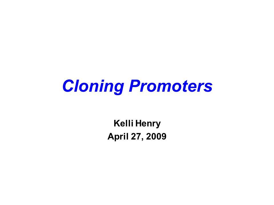 Cloning Promoters Kelli Henry April 27, 2009