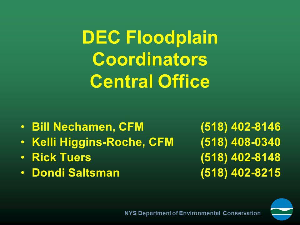 NYS Department of Environmental Conservation DEC Floodplain Coordinators Central Office Bill Nechamen, CFM(518) 402-8146 Kelli Higgins-Roche, CFM(518)