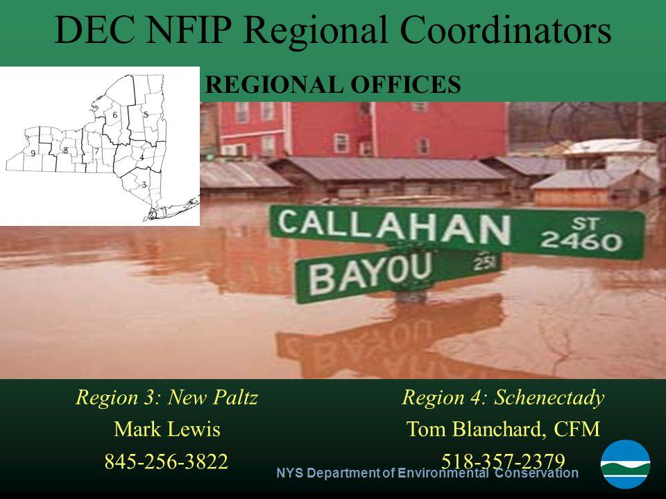 NYS Department of Environmental Conservation Region 4: Schenectady Tom Blanchard, CFM 518-357-2379 Region 3: New Paltz Mark Lewis 845-256-3822 DEC NFI