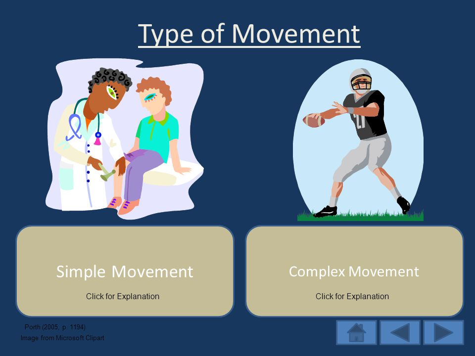 Require a burst of energy from an agonist muscle group; the movement is programmed from the start, so the movement proceeds from start to finish without modification Type of Movement Simple Movement Self-terminating Movement: require smooth muscle sequence of coordinated agonist & antagonist movements programmed by higher brain centers to start, then are modified as the movement proceeds Complex Movement Click for Explanation Porth (2005, p.