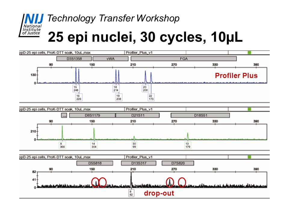 Technology Transfer Workshop 25 epi nuclei, 30 cycles, 10µL drop-out Profiler Plus