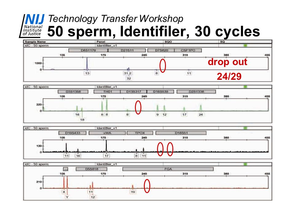 Technology Transfer Workshop drop out 24/29 50 sperm, Identifiler, 30 cycles