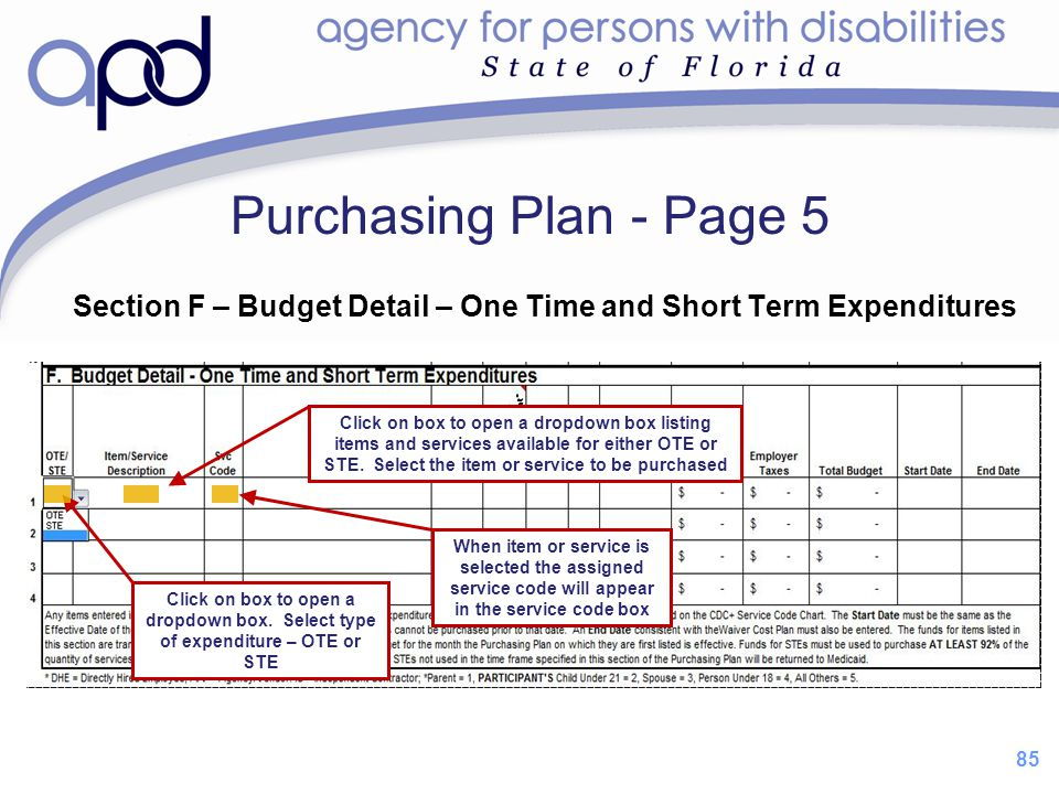 85 Purchasing Plan - Page 5 Section F – Budget Detail – One Time and Short Term Expenditures When item or service is selected the assigned service cod