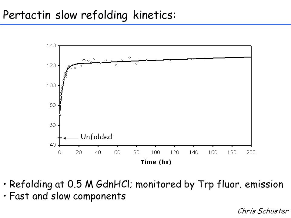 Pertactin slow refolding kinetics: Refolding at 0.5 M GdnHCl; monitored by Trp fluor.
