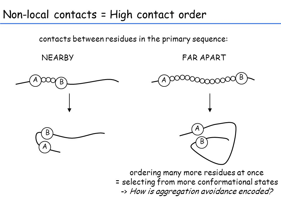Non-local contacts = High contact order contacts between residues in the primary sequence: NEARBYFAR APART A B B A A B A B ordering many more residues at once = selecting from more conformational states -> How is aggregation avoidance encoded