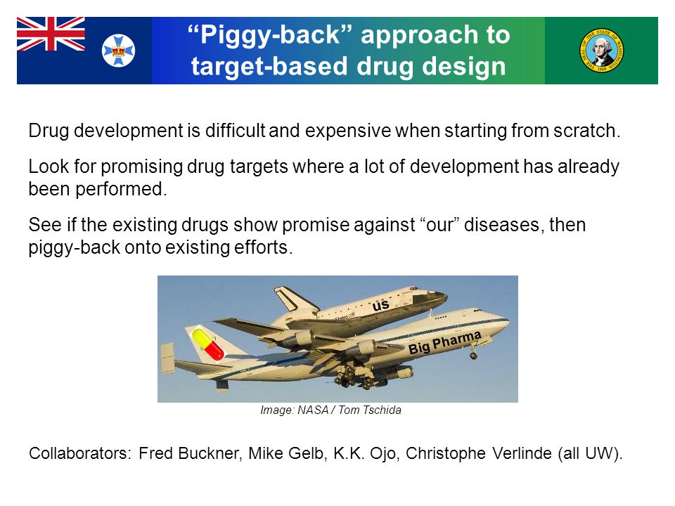Piggy-back approach to target-based drug design Drug development is difficult and expensive when starting from scratch.