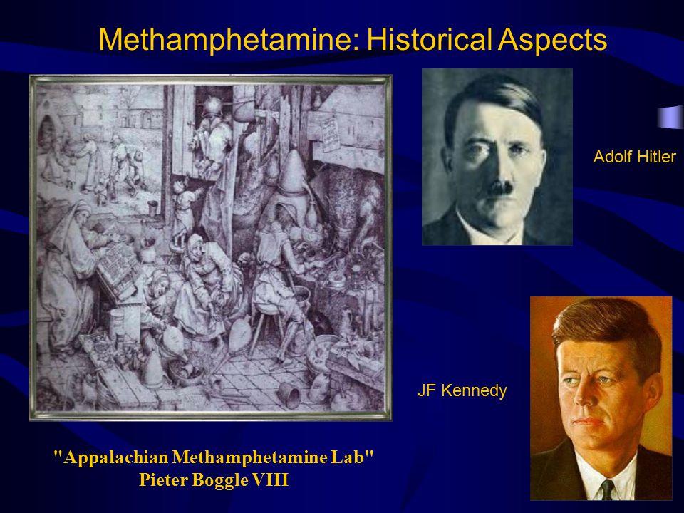Appalachian Methamphetamine Lab Pieter Boggle VIII Methamphetamine: Historical Aspects Adolf Hitler JF Kennedy