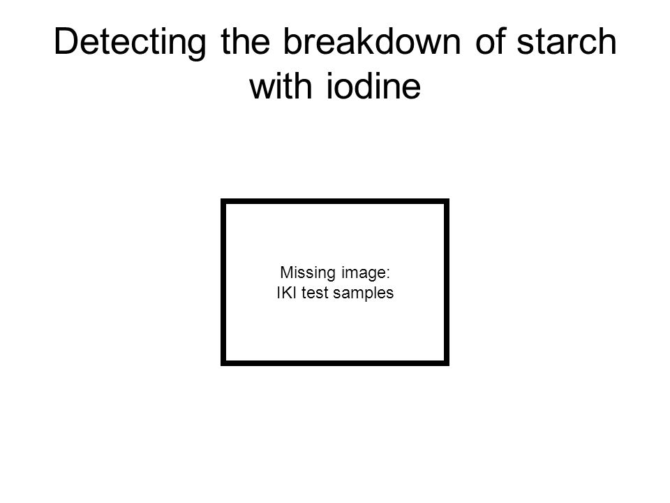 Detecting the breakdown of starch with iodine Missing image: IKI test samples