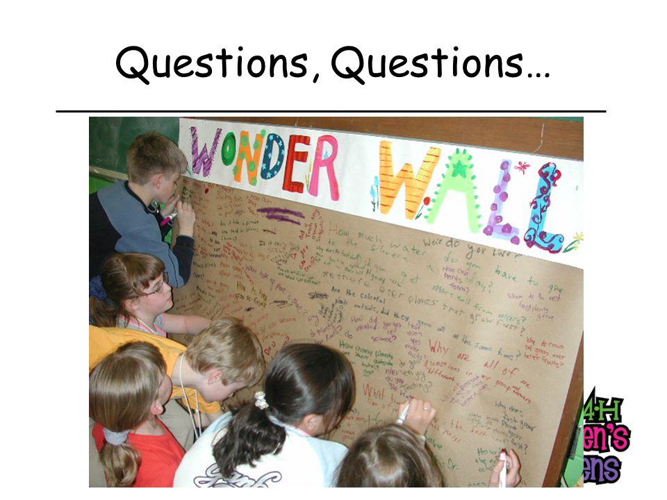 Questions, Questions…