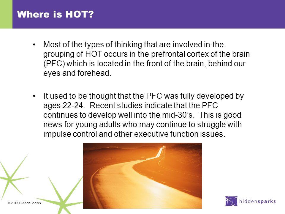 © 2013 Hidden Sparks Some important brain biology