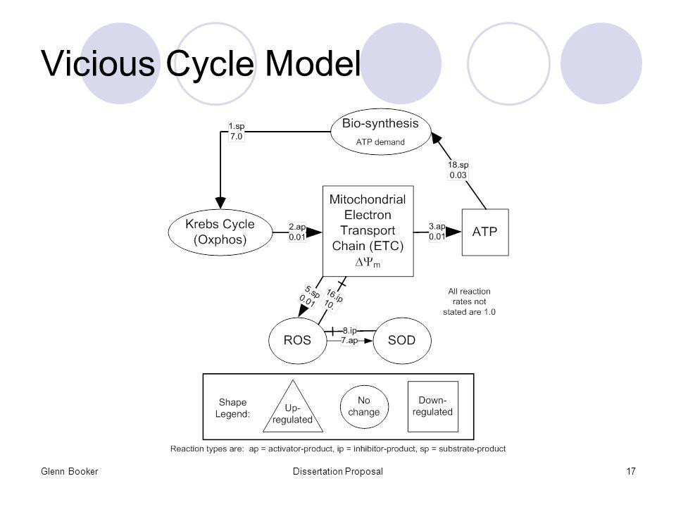 Glenn BookerDissertation Proposal17 Vicious Cycle Model