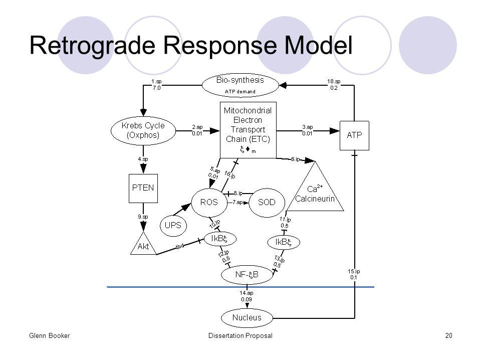 Glenn BookerDissertation Proposal20 Retrograde Response Model