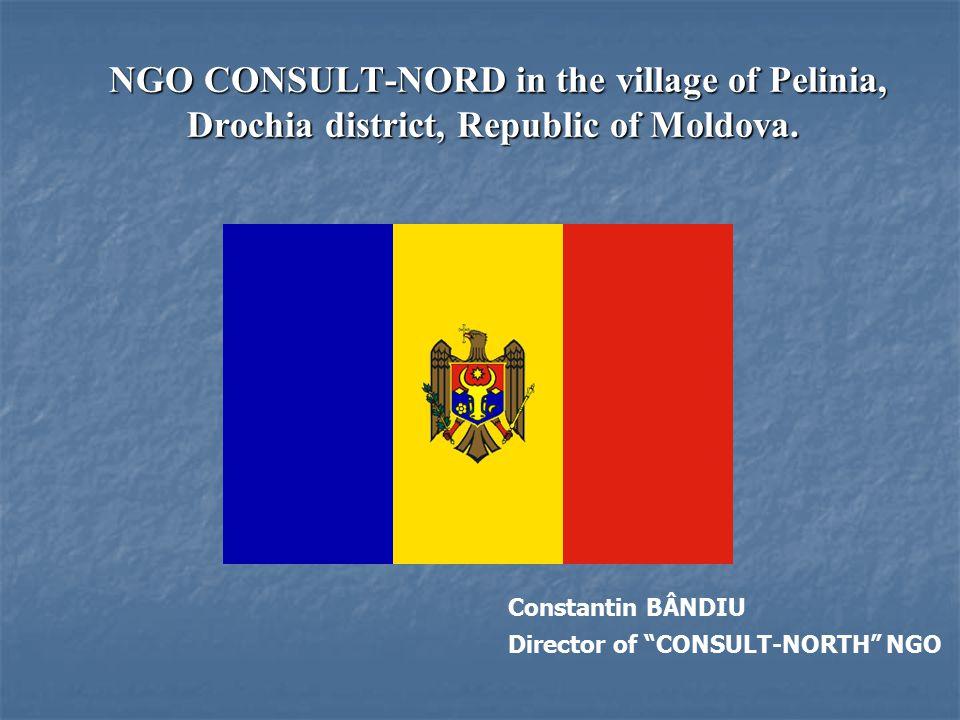 NGO CONSULT-NORD in the village of Pelinia, Drochia district, Republic of Moldova.