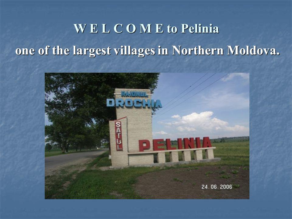 W E L C O M E to Pelinia one of the largest villages in Northern Moldova.