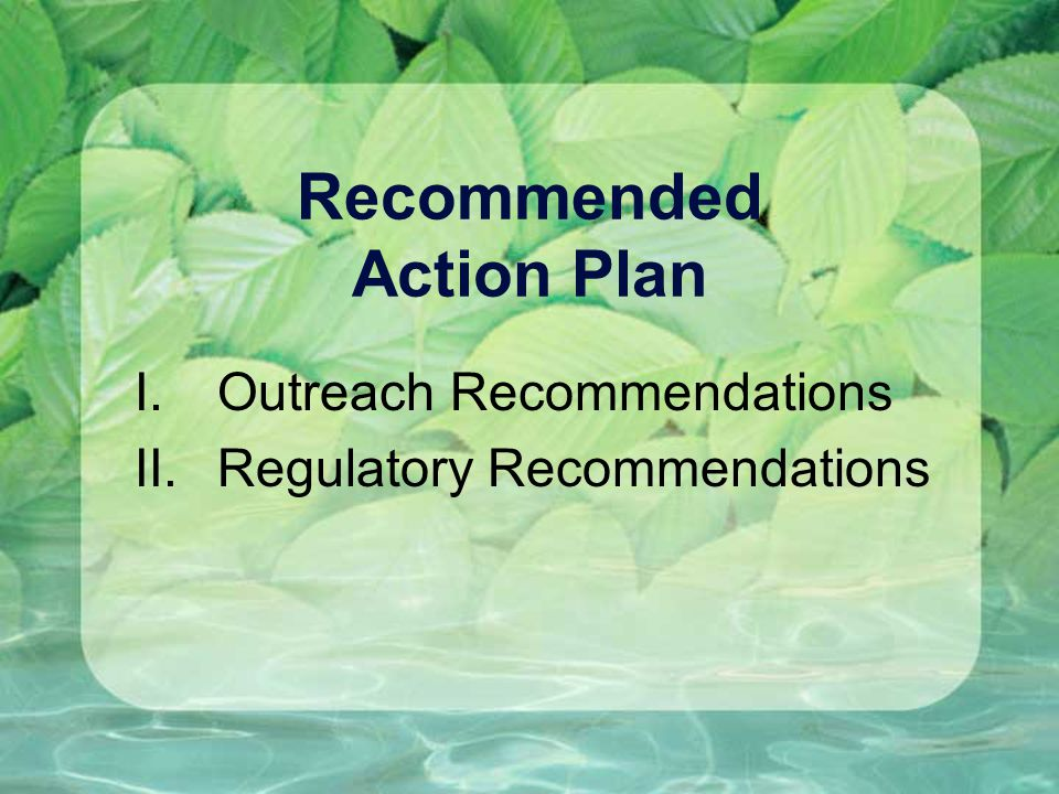 Recommended Action Plan I.Outreach Recommendations II.Regulatory Recommendations
