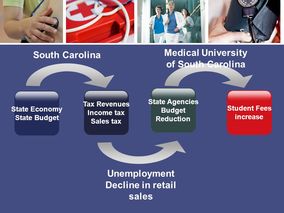 State Economy State Budget South Carolina Unemployment Decline in retail sales Medical University of South Carolina Tax Revenues Income tax Sales tax State Agencies Budget Reduction Student Fees increase