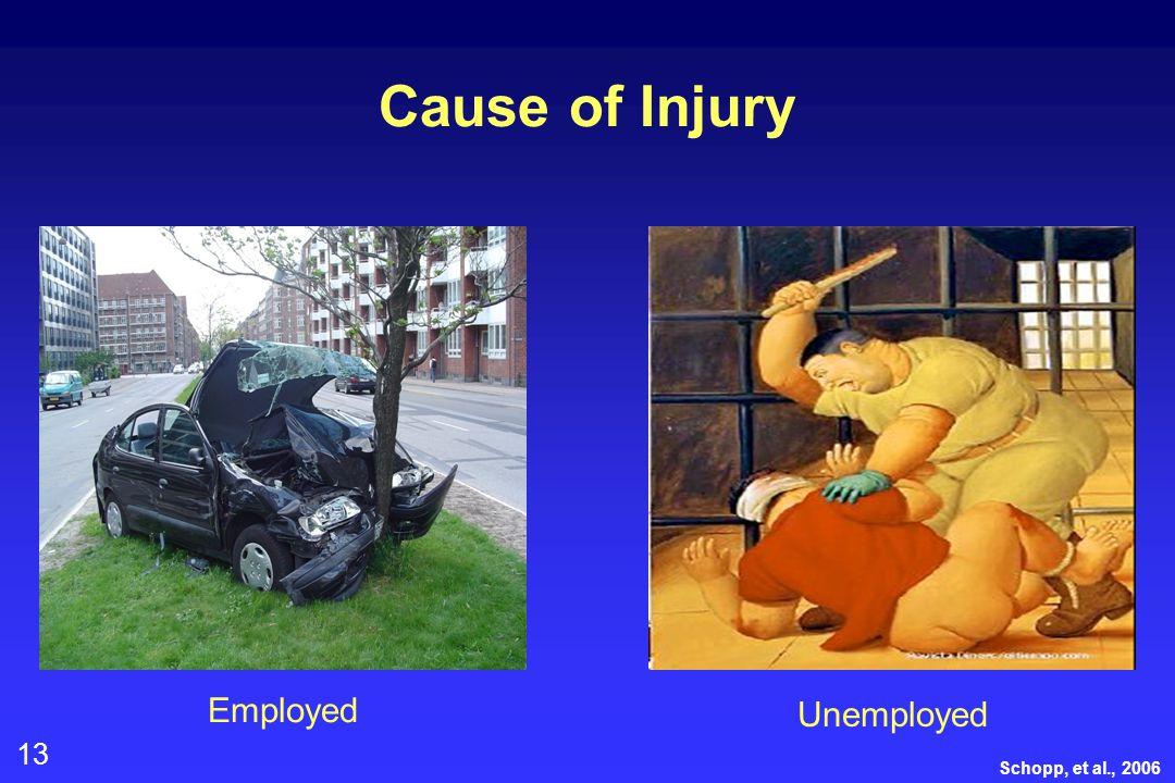 13 Cause of Injury Schopp, et al., 2006 Employed Unemployed