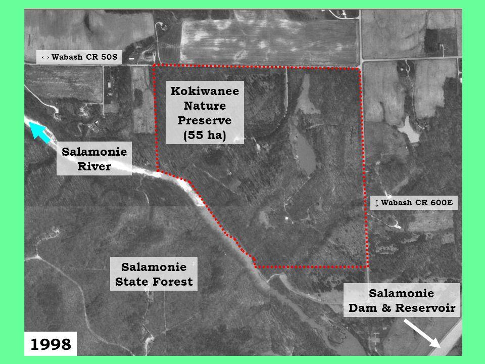 1998 Salamonie State Forest Kokiwanee Nature Preserve (55 ha) Salamonie Dam & Reservoir ↔ Wabash CR 50S ↕ Wabash CR 600E Salamonie River