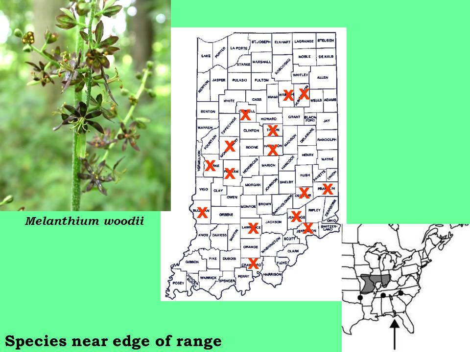 x x x x x x x x x xx x x x x Melanthium woodii Species near edge of range