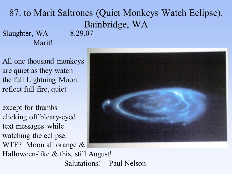 87. to Marit Saltrones (Quiet Monkeys Watch Eclipse), Bainbridge, WA Slaughter, WA 8.29.07 Marit.