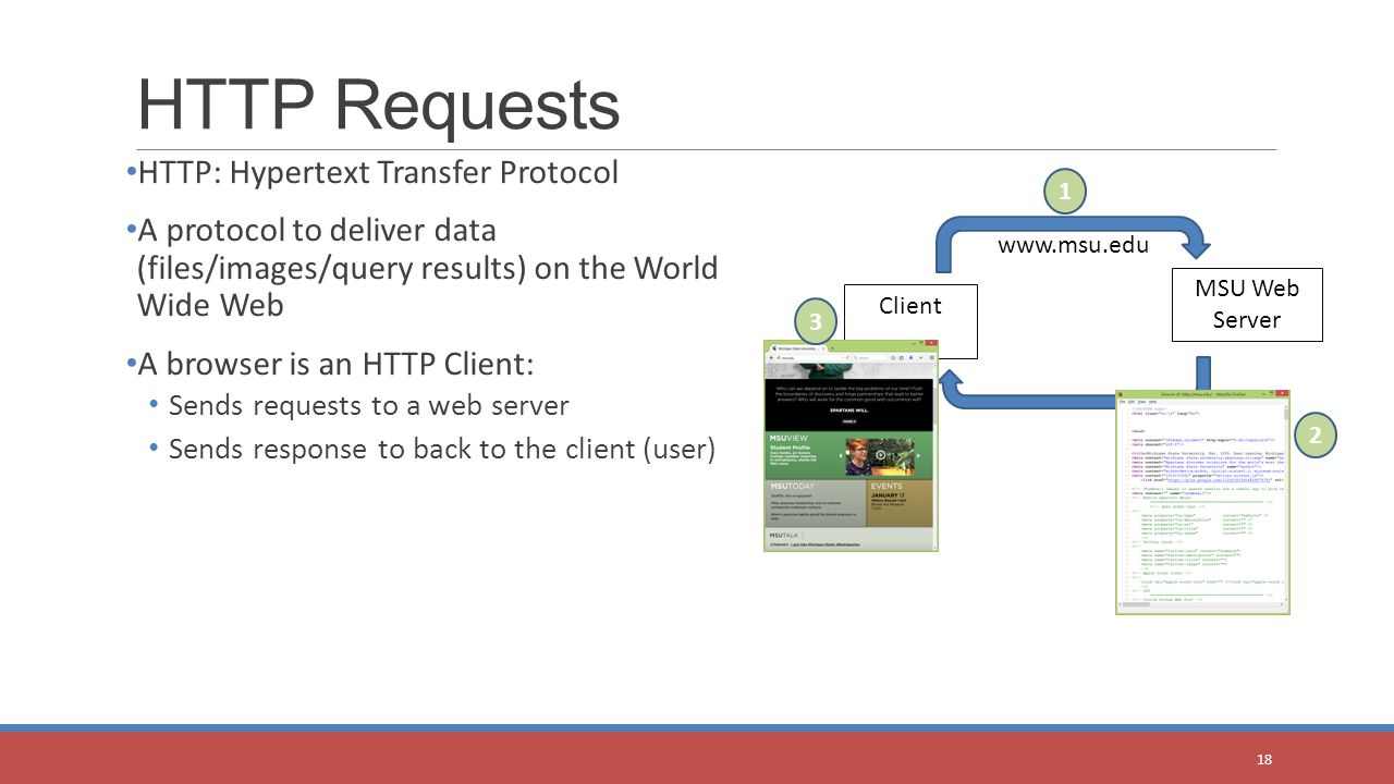 HTTP: Hypertext Transfer Protocol A protocol to deliver data (files/images/query results) on the World Wide Web A browser is an HTTP Client: Sends requests to a web server Sends response to back to the client (user) HTTP Requests 18 MSU Web Server Client www.msu.edu 1 2 3