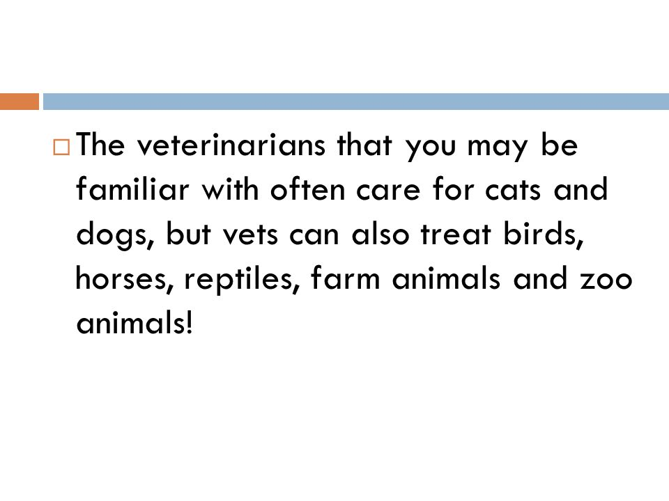  The veterinarians that you may be familiar with often care for cats and dogs, but vets can also treat birds, horses, reptiles, farm animals and zoo animals!