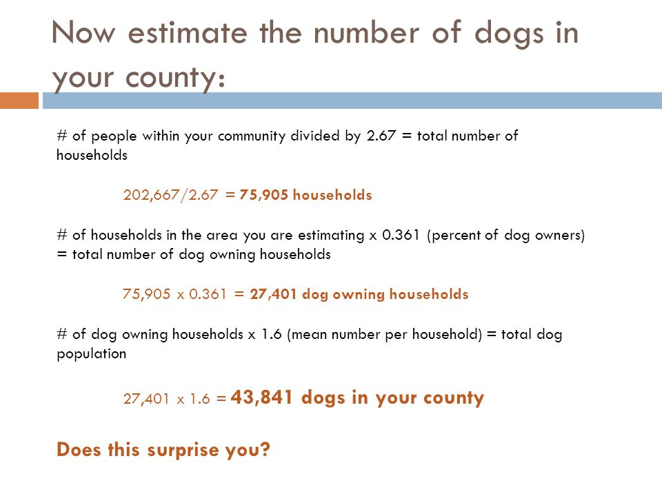 Now estimate the number of dogs in your county: # of people within your community divided by 2.67 = total number of households 202,667/2.67 = 75,905 households # of households in the area you are estimating x 0.361 (percent of dog owners) = total number of dog owning households 75,905 x 0.361 = 27,401 dog owning households # of dog owning households x 1.6 (mean number per household) = total dog population 27,401 x 1.6 = 43,841 dogs in your county Does this surprise you?
