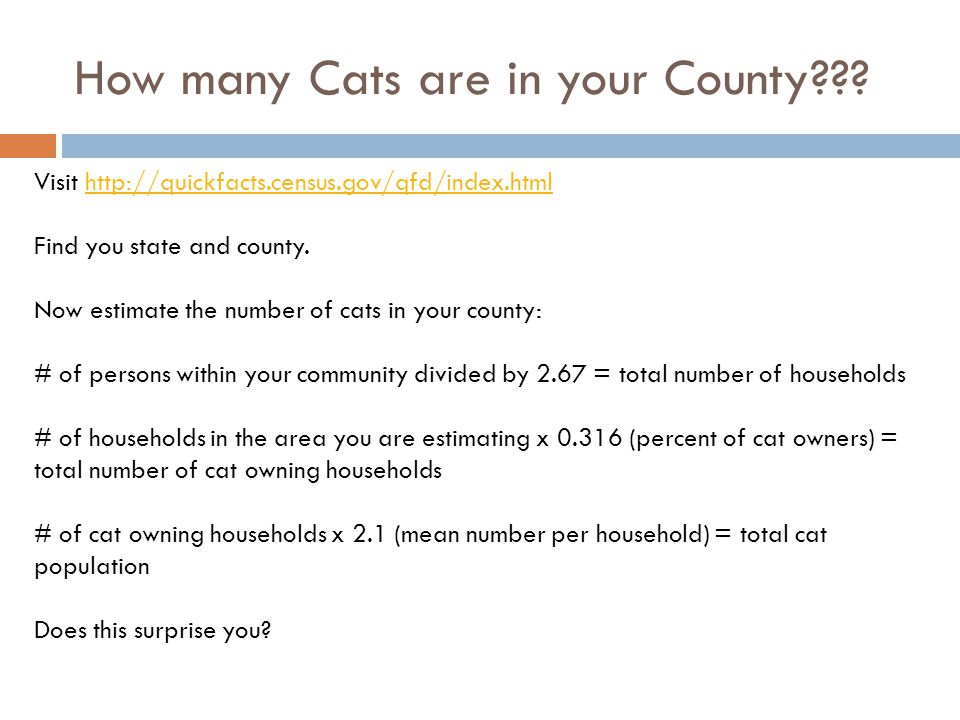 How many Cats are in your County??.