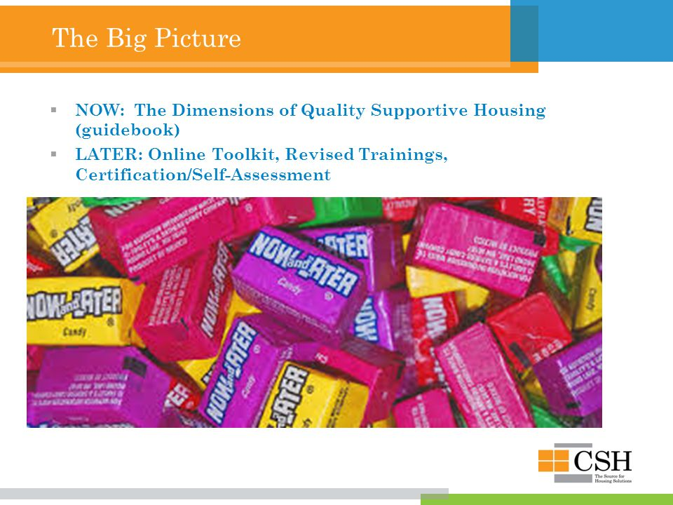 The Big Picture  NOW: The Dimensions of Quality Supportive Housing (guidebook)  LATER: Online Toolkit, Revised Trainings, Certification/Self-Assessment