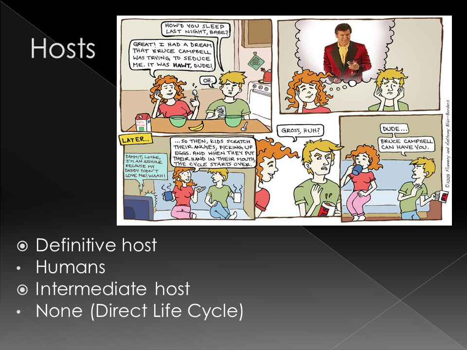  Definitive host Humans  Intermediate host None (Direct Life Cycle)