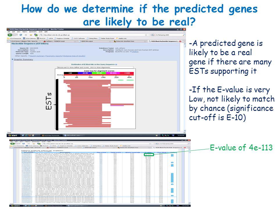 FGENESHBLASTnBLASTptBLASTnDescription Gene 1n/a1.41.8Not significant (NS) Gene 22e-445.5e-5 454PCS0275207 Scarlet Runner Bean globular stage suspensor Gene 34e-1135e-27e-30 ALF-R-11_2007-07-21/ALF(R)-11_N09_018_1 Alfalfa (Medicago sativa) Trichome S13dNF77C04GS034_465502 Germiniating Seed Medicago truncatula Gene 43e-651.7e-15VBL1_32_G04_E001.g1 Cotyledon and young leaves of peanut Arachis hypogaea GENSCANBLASTnBLASTptBLASTnDescription Gene 13e-143.8n/aCT986291 Eucalyptus gunnii Gene 24e-64.40.57NS Gene 3e-754e-246e-25 KN0AAQ7YB22RM1 IVIA1 Citrus clementina ALF-R-11_2007-07-21/ALF(R)- 11_N09_018_1 Alfalfa (Medicago sativa) S13dNF77C04GS034_465502 Germiniating Seed Medicago truncatula Gene 4n/a2.1n/aNS