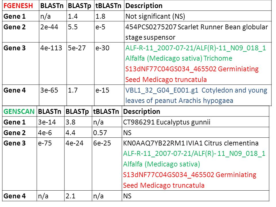 GENEMARKBLASTnBLASTptBLASTnDescription Gene 1n/a1.45e-8NS Gene 2n/ae-262e-25 ATP synthase CF1 beta subunit [Populus trichocarpa] VVB168G01_412143 An EST database for abiotic stressed leaves of Vitis vinifera Gene 3n/a Gene 4n/a1.41.8NS Gene 5n/a0.465e-30 IC0AA39AB01RM2 CitNFL Citrus clementina CT983857 Eucalyptus gunni Gene 6n/a6e-264e-34 S13dNF77C04GS034_465502 Germiniating Seed Medicago truncatula Gene 7n/a0.674e-23 454GmaGlobSeed305299 Soybean Seeds Containing Globular Stage Gene 8n/a NS Gene 9n/a3.02e-12 VBL1_32_G04_E001.g1 Cotyledon and young leaves of peanut Arachis hypogaea Gene 10n/a0.85e-20MOOE277TF MOO Vigna unguiculata Gene 11n/a4.70.065NS