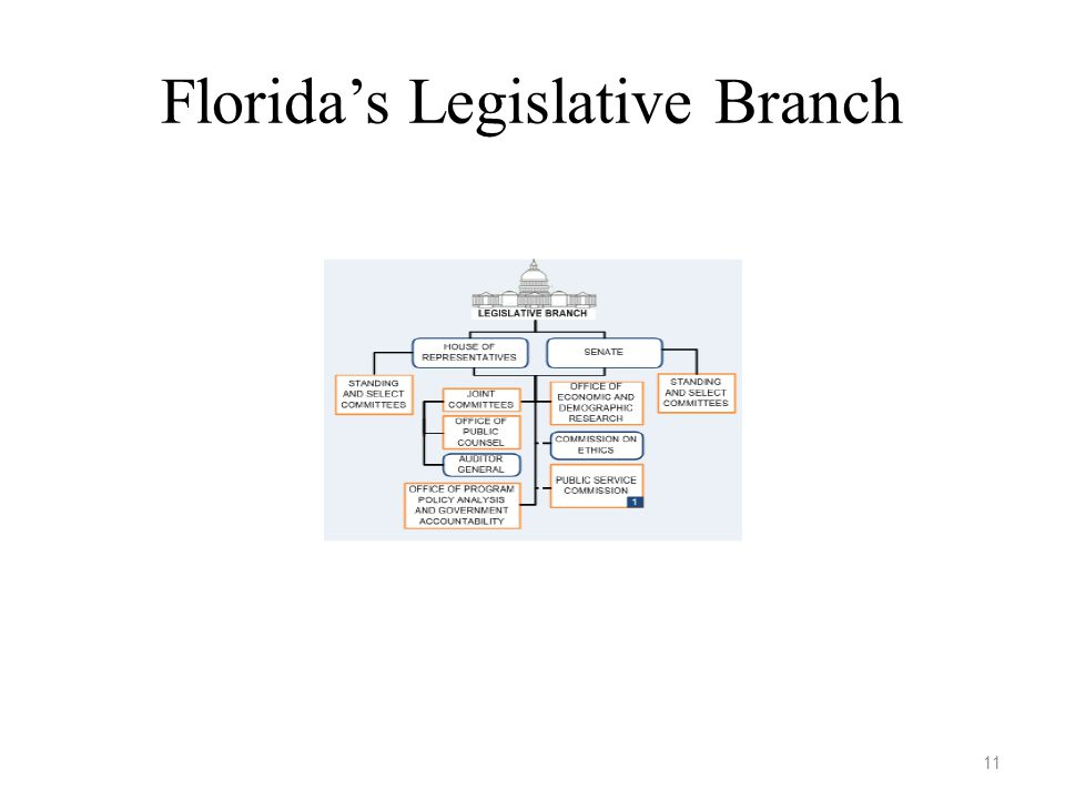 Florida's Legislative Branch 11