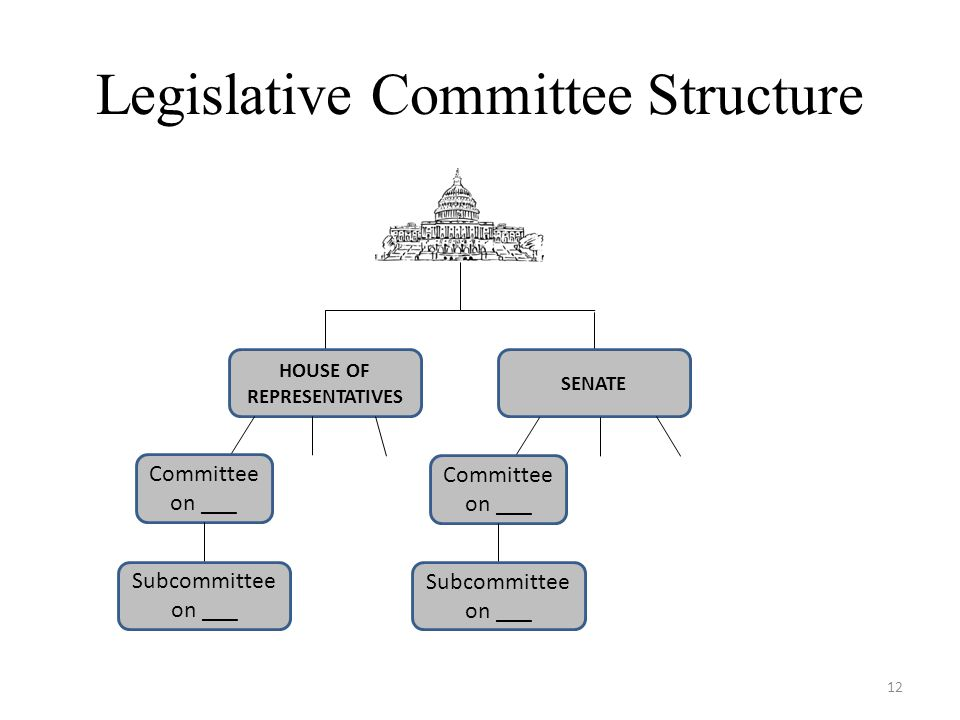 Legislative Committee Structure HOUSE OF REPRESENTATIVES SENATE Committee on ___ Subcommittee on ___ Committee on ___ Subcommittee on ___ 12