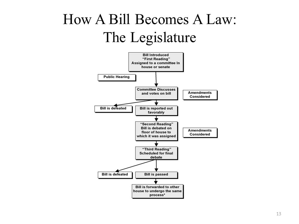 How A Bill Becomes A Law: The Legislature 13