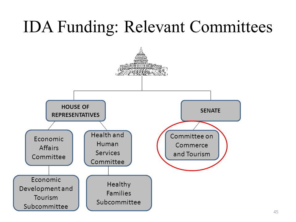 IDA Funding: Relevant Committees HOUSE OF REPRESENTATIVES SENATE Economic Affairs Committee Economic Development and Tourism Subcommittee Committee on Commerce and Tourism Health and Human Services Committee Healthy Families Subcommittee 45
