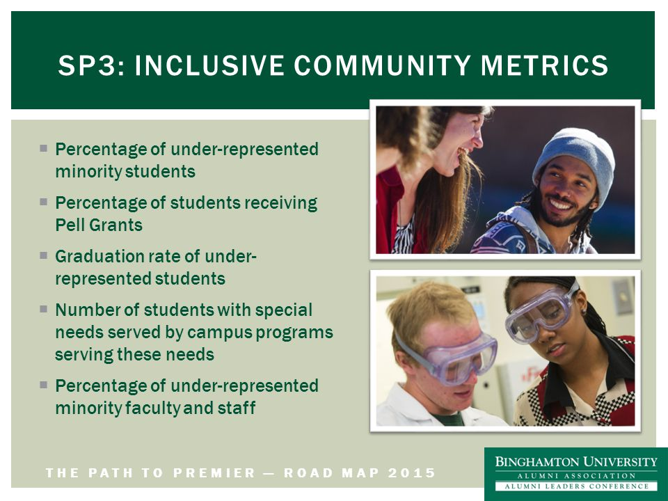 THE PATH TO PREMIER — ROAD MAP 2015 SP3: INCLUSIVE COMMUNITY METRICS  Percentage of under-represented minority students  Percentage of students receiving Pell Grants  Graduation rate of under- represented students  Number of students with special needs served by campus programs serving these needs  Percentage of under-represented minority faculty and staff