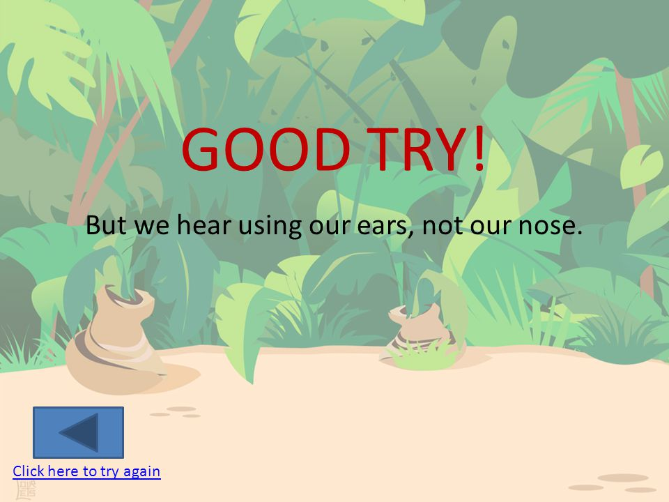 LET'S REVIEW Which one of our senses do we use our nose for.