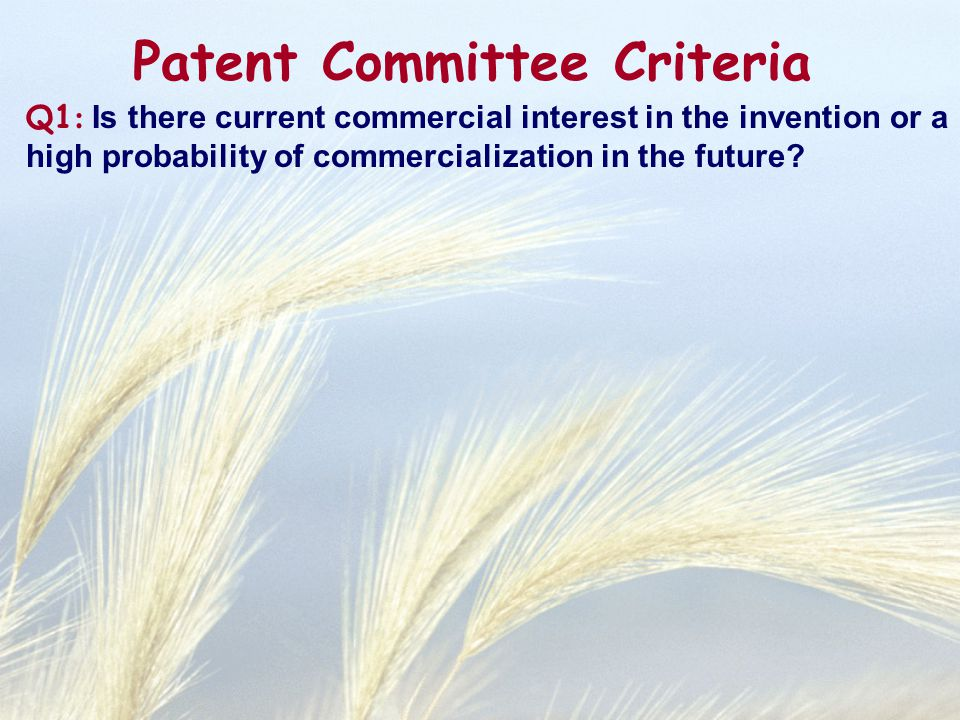Q1 : Is there current commercial interest in the invention or a high probability of commercialization in the future? Patent Committee Criteria
