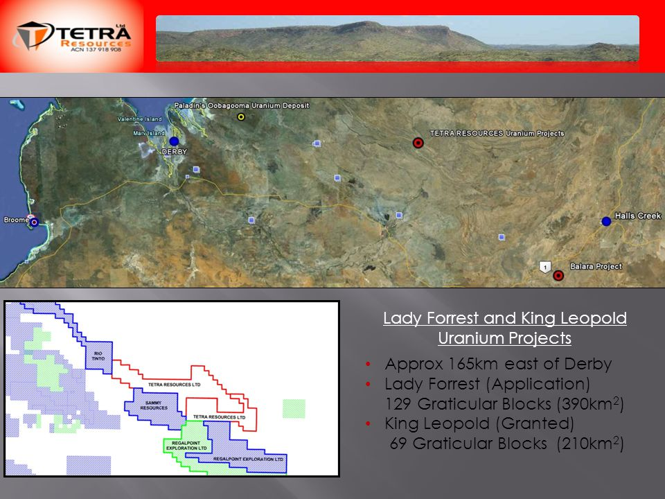Lady Forrest and King Leopold Uranium Projects Approx 165km east of Derby Lady Forrest (Application) 129 Graticular Blocks (390km 2 ) King Leopold (Granted) 69 Graticular Blocks (210km 2 )