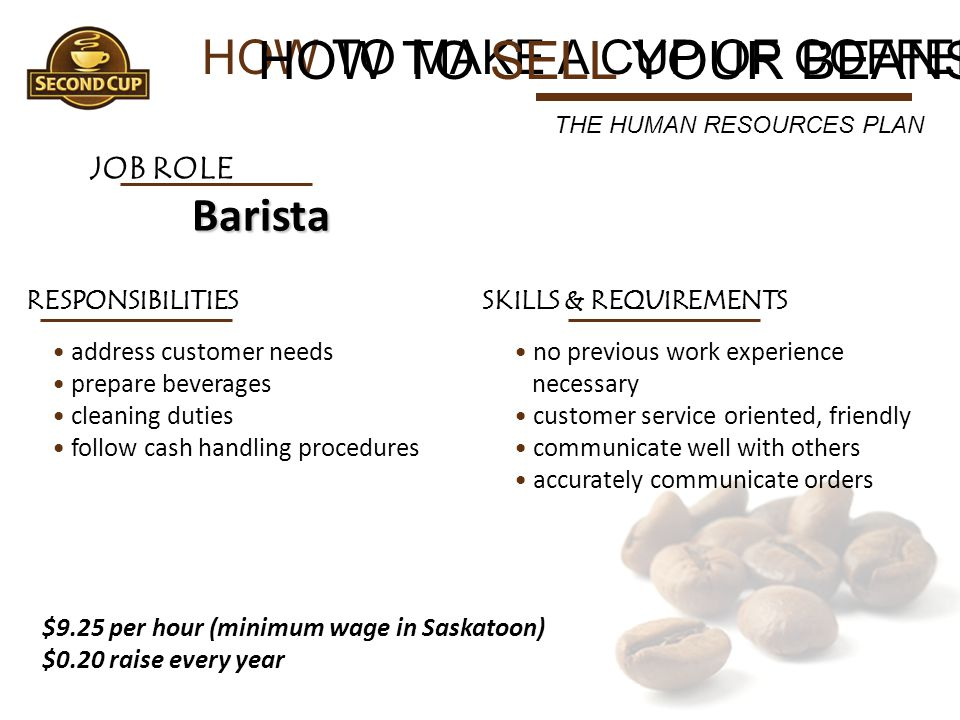 HOW TO MAKE A CUP OF COFFEE HOW TO SELL YOUR BEANS THE HUMAN RESOURCES PLAN JOB ROLE Barista RESPONSIBILITIES address customer needs prepare beverages